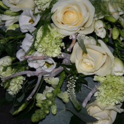 MP flowers, events & more